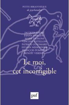 le_moi_cet_incorrigible