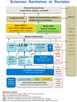 schema filiere SSS